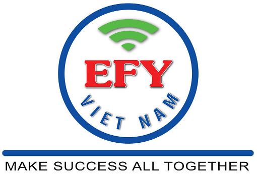 Bảng báo giá Dịch vụ chữ ký số Công cộng EFY-CA